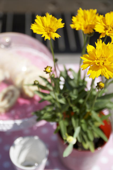 Flicköga - rosa duk
