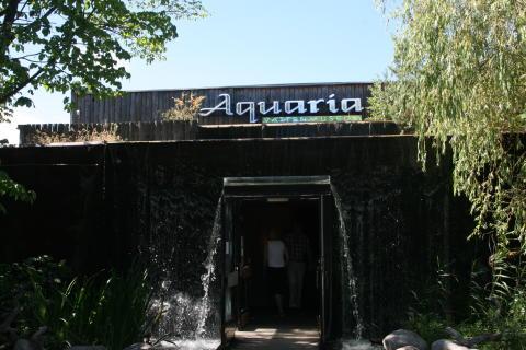 Sista veckan för Aquaria Vattenmuseum