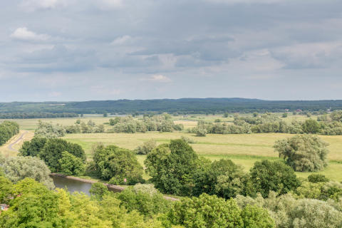 Blick in den Nationalpark Unteres Odertal bei Stützkow