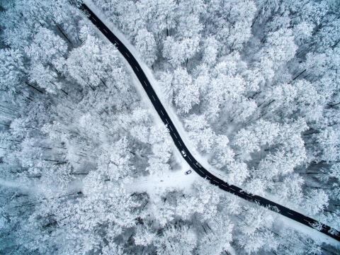 2995_6893_EberhardEhmke_Germany_Open_LandscapeNature_2018