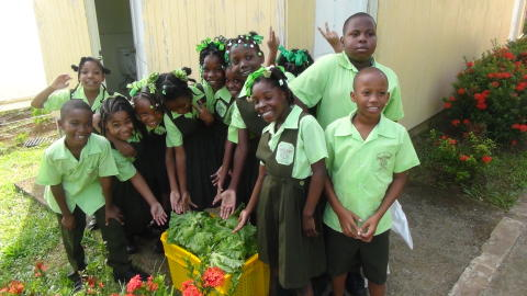 Fred. Olsen Cruise Lines launches new 'Closer to the Real Caribbean' 'voluntourism' shore experiences in 2019