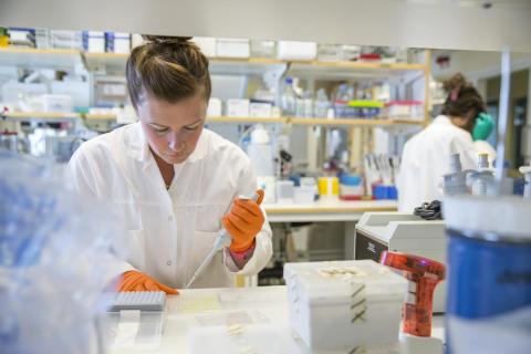 Labb på Umeå Biotech Incubator