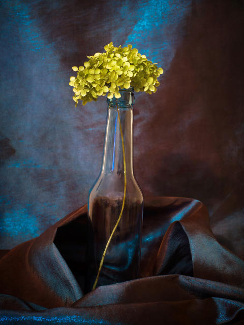 © Iwona Nabzdyk, Poland, Commended, Open, Still Life (Open competition), 2018 Sony World Photography Awards