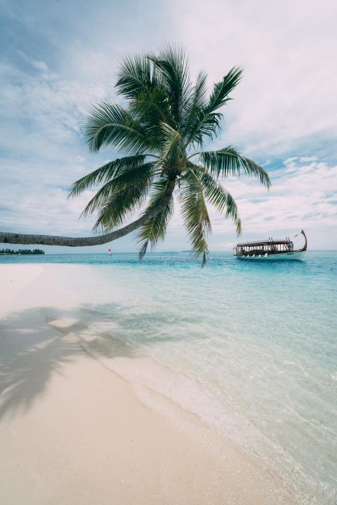 Alphaddicted_Malediven_02