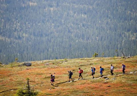 Norges største terrengløp- og marsj for damer