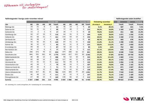 Vismas månadsrapport för nyföretagandet (november)