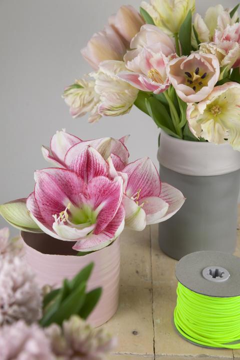 Arrangemang med rosa tulpaner
