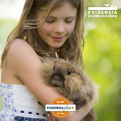 Stort intresse för kundklubb om djurhälsa