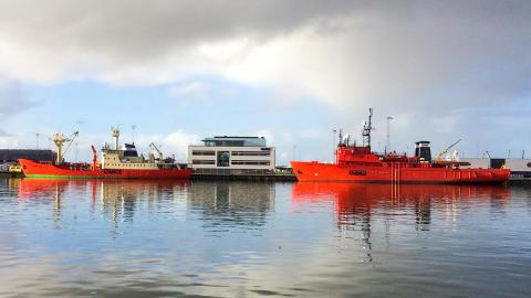 Skifteskibe har fået fast basehavn