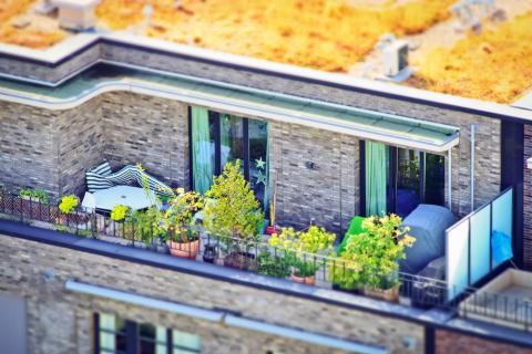 """Marktforschungsstudie """"City Gardening"""" – ein boomender Markt?"""