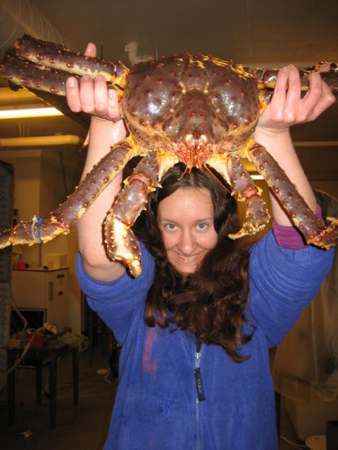 PostDoc Snow Crab