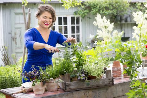 Lär dig att krydda som proffsen - trädgårdsmästare Fredrik Andersson och kocken Jessica Frej bjuder på sina bästa tips!