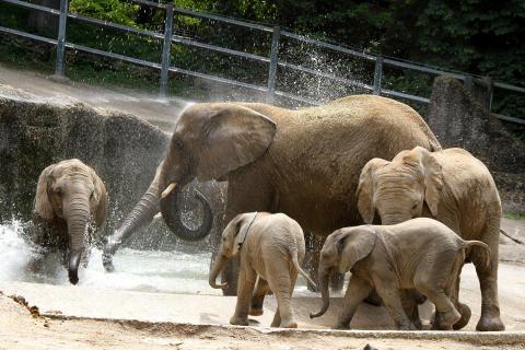 Der Grüne Zoo Wuppertal_© Barbara Scheer