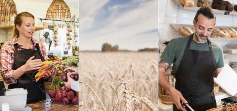Innovation stärker livsmedelskedjan
