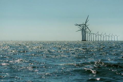 Ny VVM-proces for Vesterhav Syd igangsættes