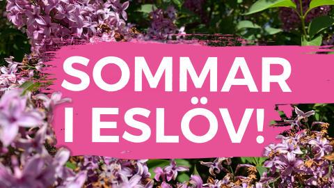 Sommar i Eslöv 2020 (2)