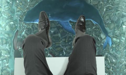 3D shark image with CFO in danger