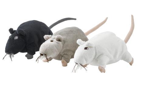 Efter voffskriet – råttan kommer tillbaka till IKEA