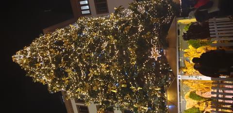 7. Weihnachtsbaum in Wiesbaden