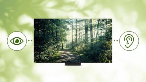 Samsung investerer i TV-oplevelser for alle