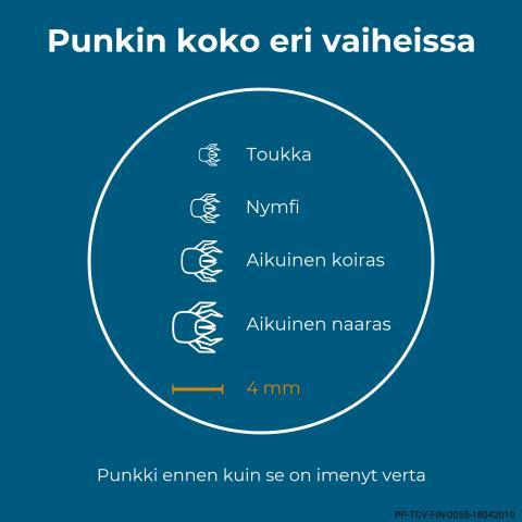 Print_infograafi_punkin_koko