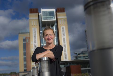 Internationally renowned art academic Andrea Phillips is the new BALTIC Professor at Northumbria University, Newcastle