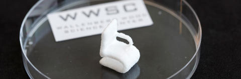 Cellulose from wood can be printed in 3D