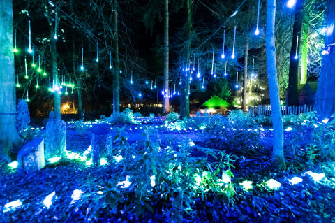 Center Parcs welcomes Santa Claus back to the forest