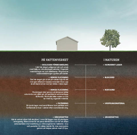 Naturen flyttar in på vattenverket
