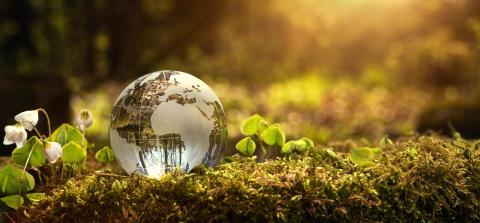 Fynske virksomheder sætter fokus på FN's Verdensmål i Svendborg