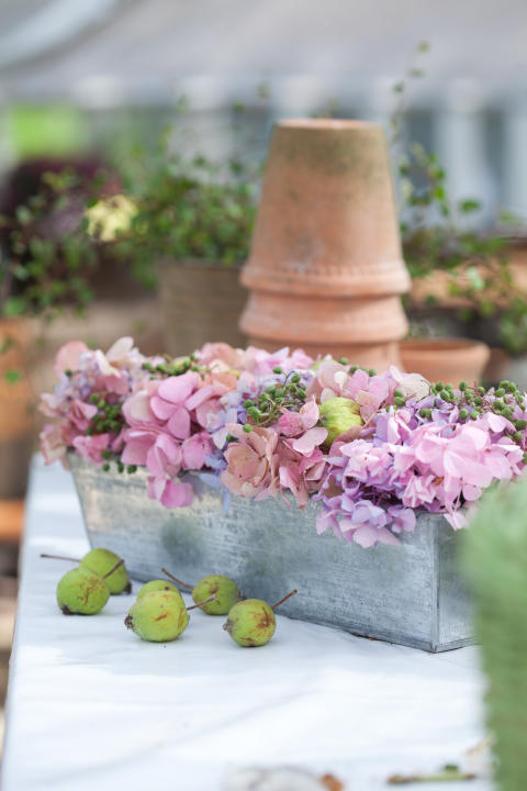 Blommor i kakform