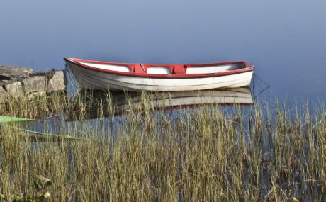 HaV ger pengar till flera havs- och vattenprojekt