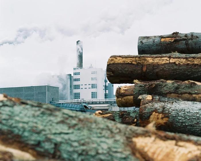 Besök oss på Skogsindustridagarna