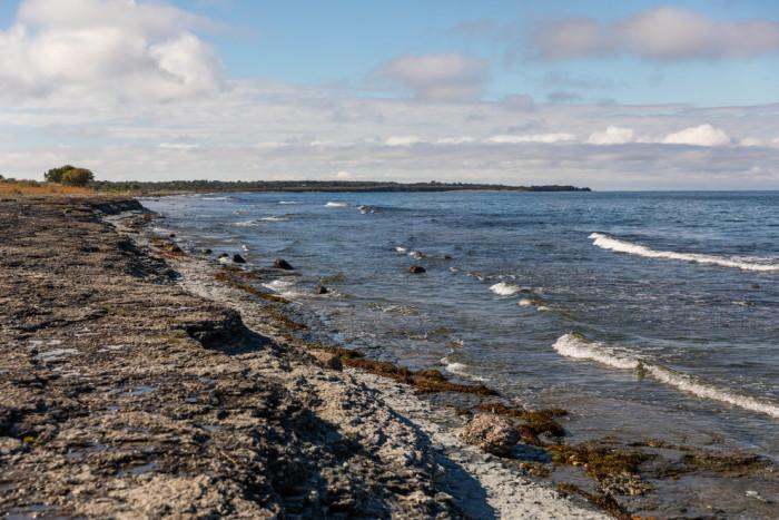 Föreslår åtgärder för en bättre havsmiljö