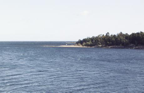 Beslut om nya regler för laxfiske vid kusten