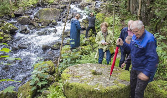 Engagemang och lokal samverkan kan förbättra Sveriges vattenmiljö