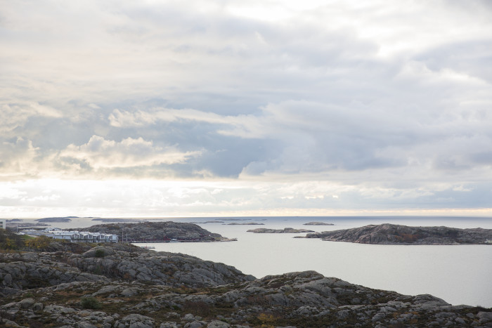 Gemensam strategi visar vägen framåt för svenskt fiske och vattenbruk