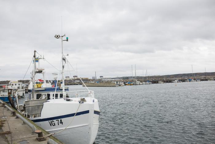 Fiskemöjligheter 2020 - kvoter för Västerhavet klara