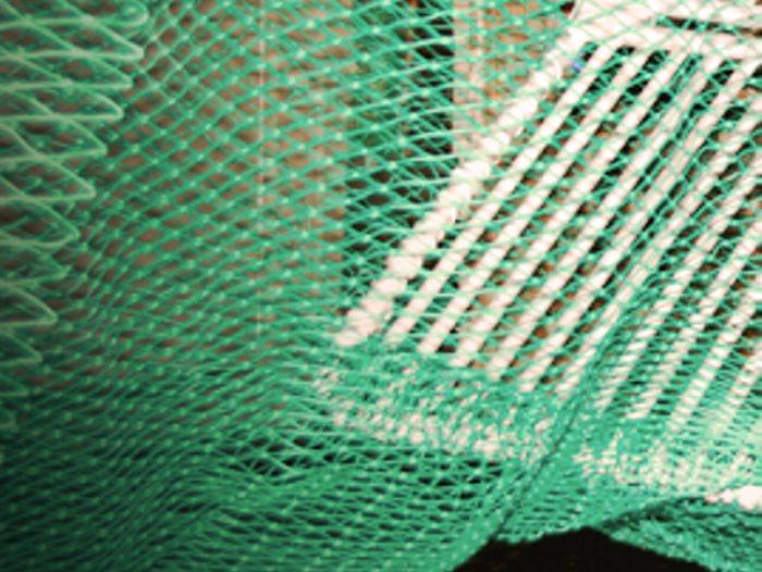 HaV-satsning på 38 miljoner för att utveckla ett mer selektivt fiske