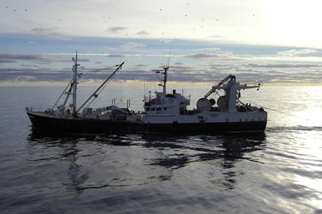Sverige i EU-toppen för digitala loggböcker i fisket