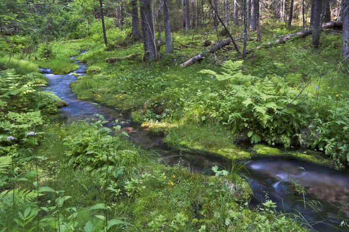 HaV hoppas på beslut om åtgärdsprogrammen för vatten i år