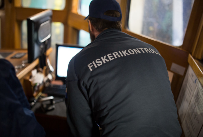 Stora skillnader mellan rapportering och kontrollresultat för sillfisket i Östersjön