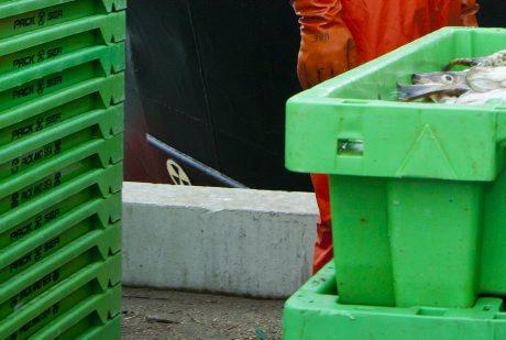 HaV föreslår enklare kontroll av importerad fisk från tredje land