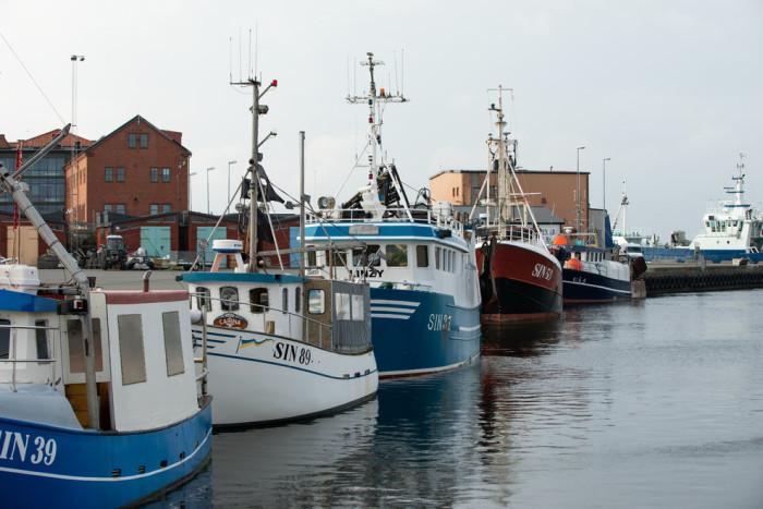Fiske efter bottenlevande arter kan bli lönsammare