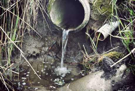 HaV föreslår miljöskatt för att få bort olagliga enskilda avlopp