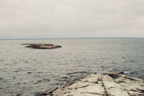 Klagomål på HaV:s beslut om laxfiske