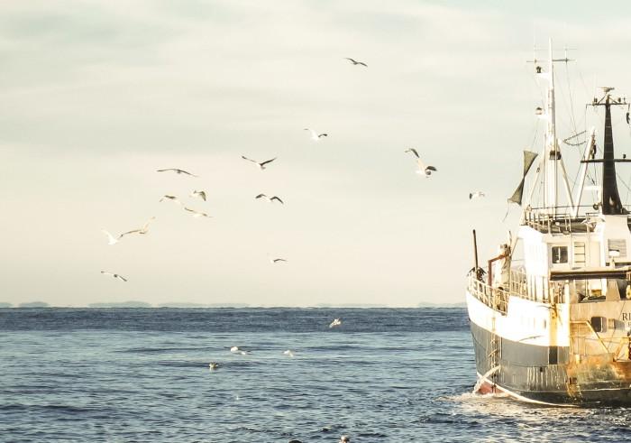 Yrkesfiskare döms för utkast av småräka: