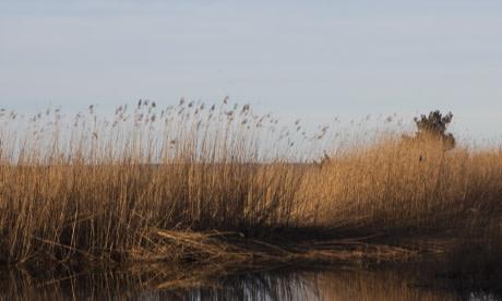 Studie för att säkra Gotlands vattenbehov