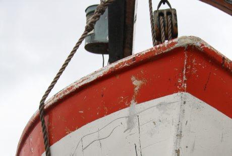 Ny metod att upptäcka giftiga båtfärger