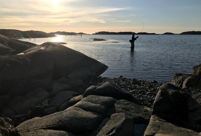 Ny HaV-rapport: Fritidsfiskare får olika napp